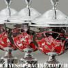 AMBIANCE - COUPES - VAINQUEURS - N°2 – PAGNY Jean- Paul – PERRIER Thierry – BOUVET J-B – Ferrari 458 GT 2 – VISIOM - GT / Tourisme - Série V de V FFSA DIJON 2012